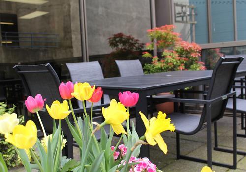 iTTTi Vancouver Außenbereich mit Blumen
